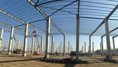 Industrial Steel Structure Construction / Agricultural Metal Frame Structures